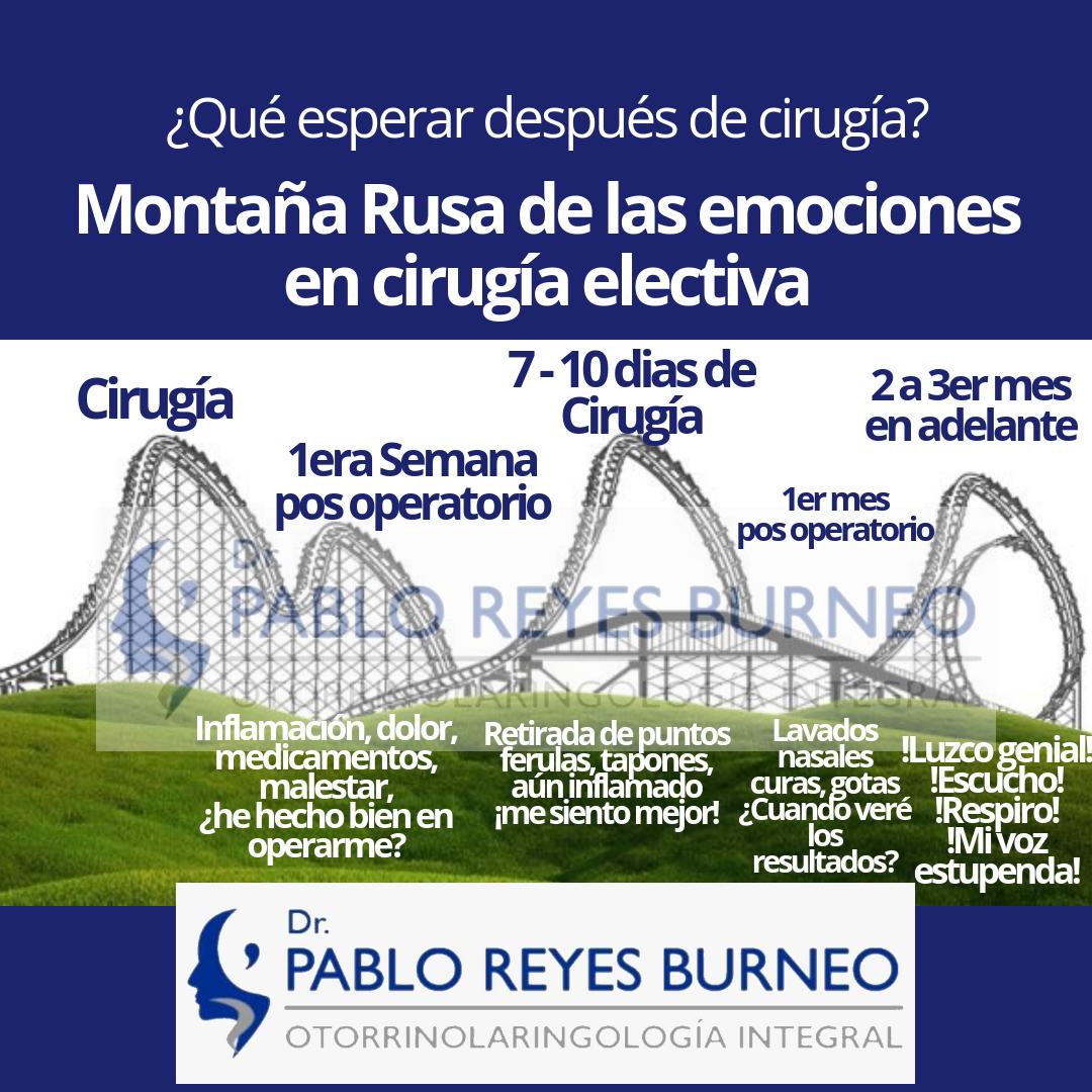 Montaña-Rusa-de-las-emociones-de-la-cirugía-electiva.png